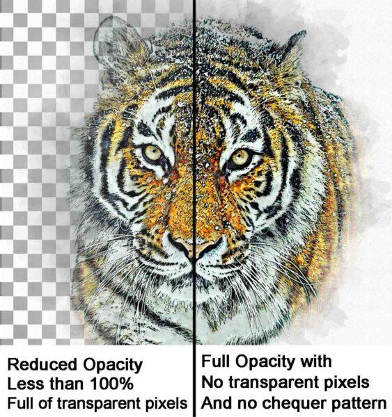 Dtg-printing-transparent-pixels-example,-London-print-shop