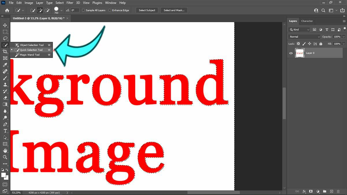 Quick-selection-tool-to-remove-background-from-image